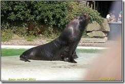 Twycross Zoo D50  01-05-2011 14-06-16
