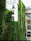 rue_d_alsace_paris_1.jpg
