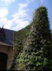 spirale_chaumont_sur_loire_1.jpg