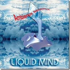 LiquidMind 1