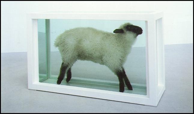 hirst_flock