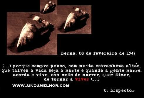Frase De Amor Clarice Lispector 3 Quotes Links