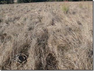 no kill in heavy grass