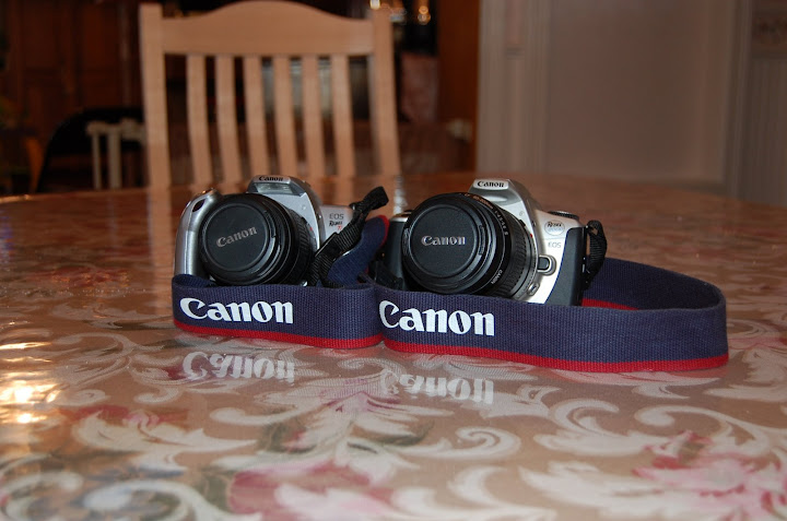 two canon rebel 35mm cameras