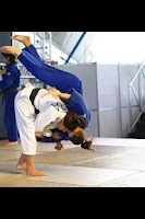 Screenshot of Judo illustrated