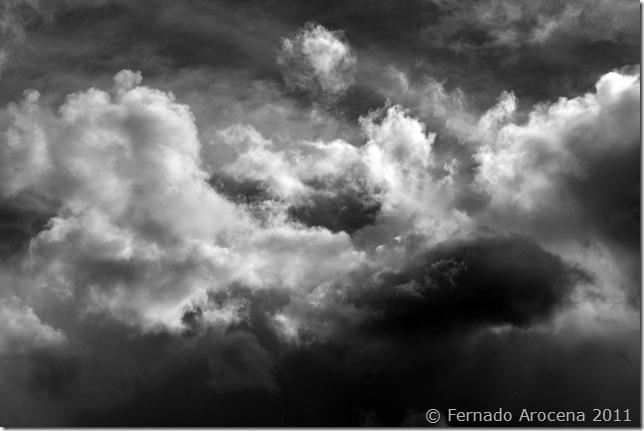 fernando arocena - tormenta 1