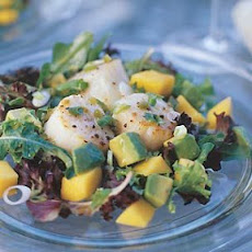 Scallop, Mango and Avocado Salad