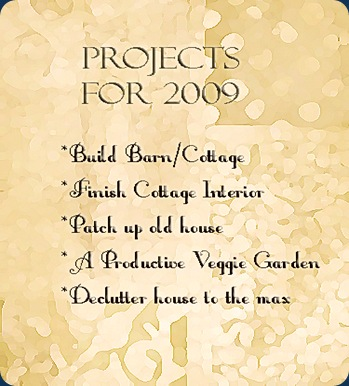 projects 2009