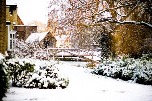 Cambridge Snow-148