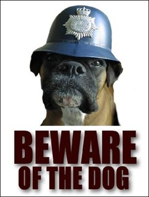 BEWARE_OF_THE_DOG2