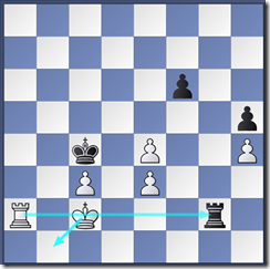 Position after black played 54..Rg2+
