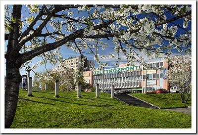 Virágzó ég - Óbuda, 2007