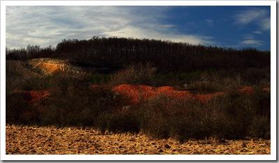 Évszaktévedt színek - Gánt, 2011. február 12.