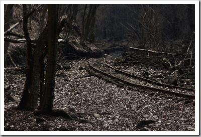 Fekete sínek - Börzsöny, 2011. március 12.