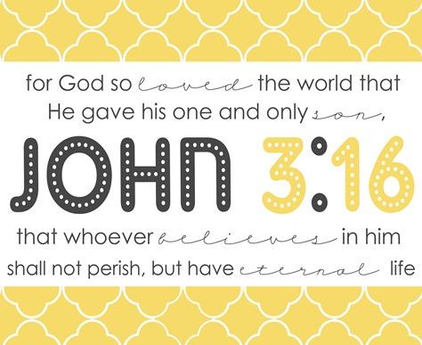 JOHN3-16