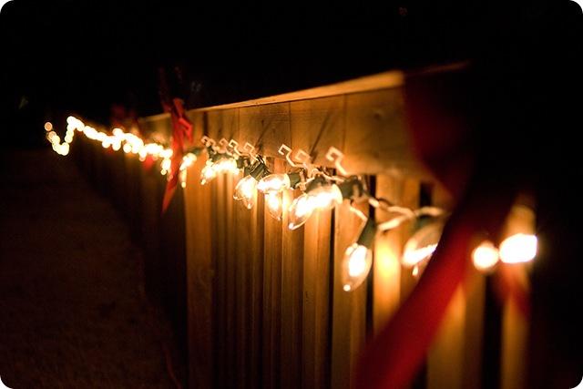Lights on short fence 2 blog