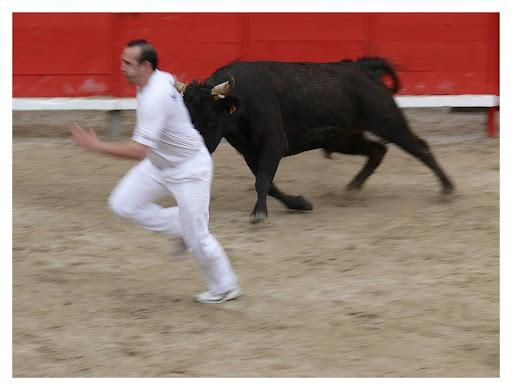 """bous al carrer"" P1200152"