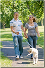 clipart image of couple walking a dog