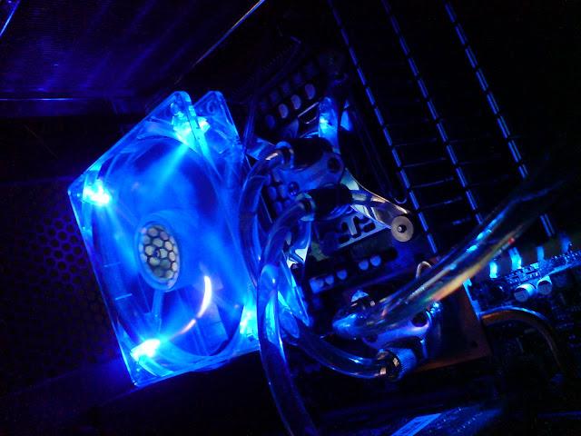 DSC06440.JPG