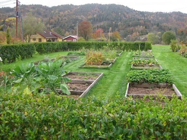 2008-10-19 I hagen (28)