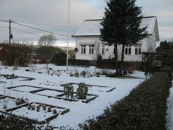 2009-01-25 Hagen (4)