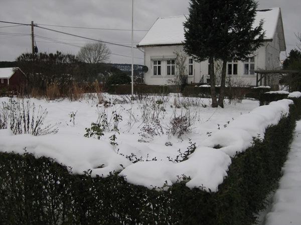 2009-12-25 Hagen (24)