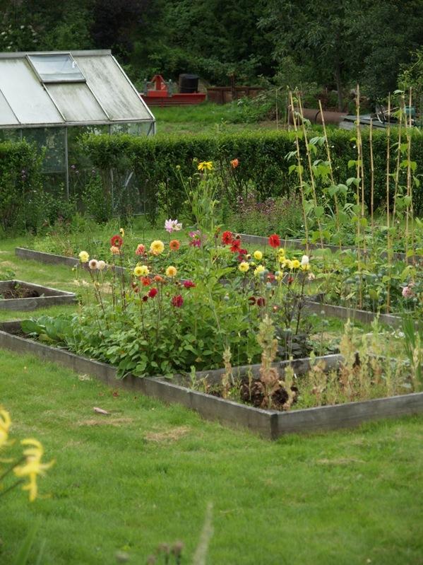 2010-08-10 Hagen (14)