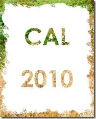 Book cover copy2