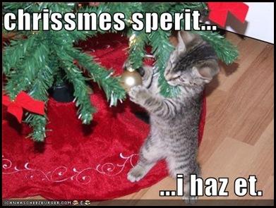 funny-pictures-little-kitten-has-christmas-spirit