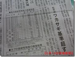 5月14日民報新聞