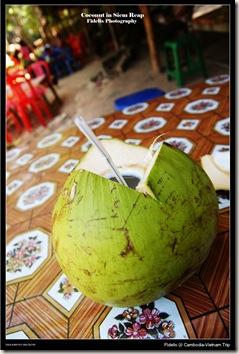 Cambodia Vietnam trip 314