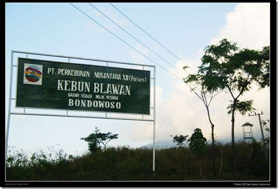 Towards Ijen12