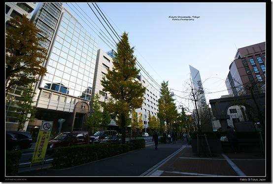 Tokyo39