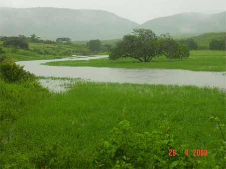 Riacho da Comunidade Cantinho transborda com as fortes chuvas caida no Municipio.