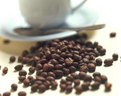 cafe.h2