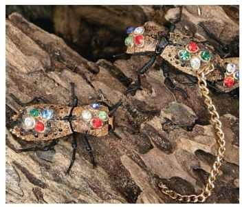 Live death-watch beetles adorned as living jewelry in market in Mexico.