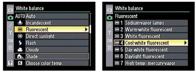 You can select a specific type of fluorescent bulb.