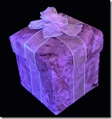 Purple-box-329_LGE