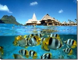 Pulau_Redang