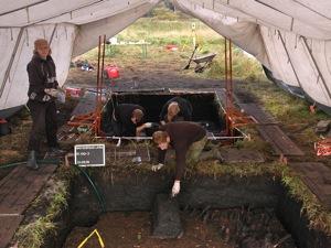Steinzeitgrabung