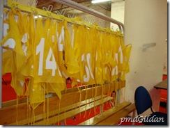 Loges AIDA, Stade De France, dossard