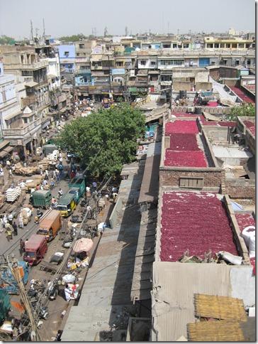 Delhi - 18 -
