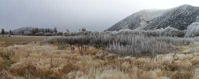 hoar-frost-2.jpg