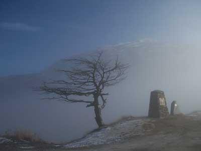 hoar-frost-5.jpg