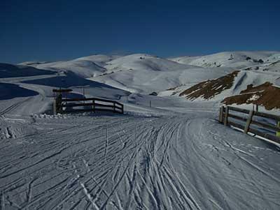 snow-farm-1.jpg
