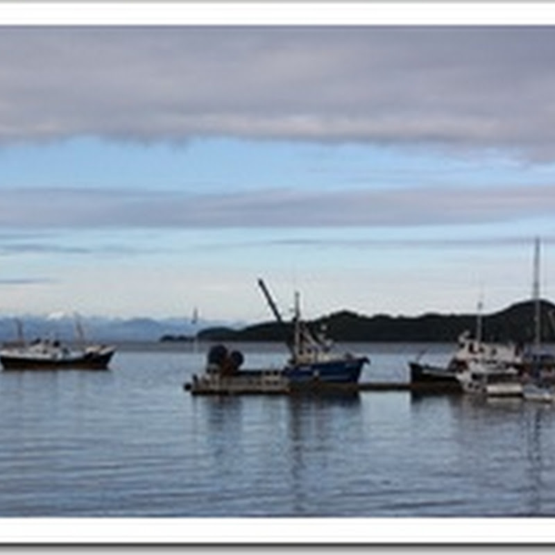 Logbook: Errands completed in Port Hardy and we turn left instead of right