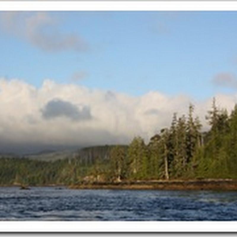 Logbook: Rounding Cape Scott and Sea Otter Cove