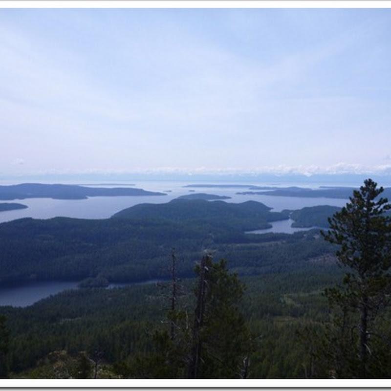 Mt Llanover Hike