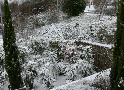 neige neruda 6-1-2010 010