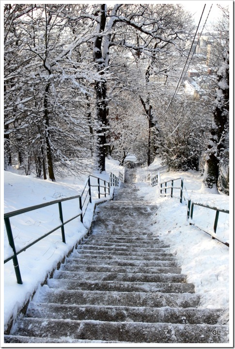 neige-11-2-10 026